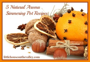 5-natural-aroma-simmering-pot-recipes1_jpg1.jpg