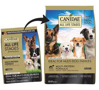 71481-CAN-Transition-Images-ALS-Dog-Multi (2).png