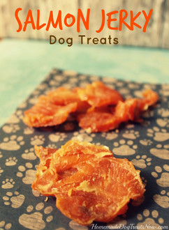 Salmon-Jerky-Dog-Treats-754x1024.jpg